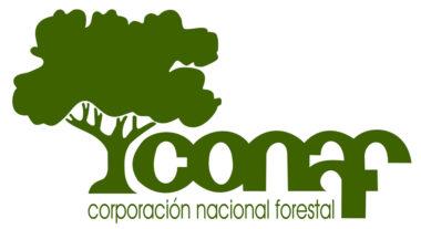 Germina realizará asesoría para la transversalización del enfoque de género en la gestión de Áreas Silvestres Protegidas de CONAF